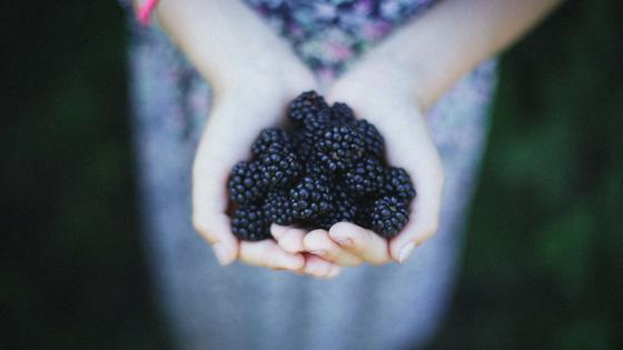 Antioxidantien schützen vor schädlichen Umwelteinflüssen