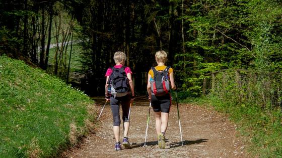 Mehr Wohlbefinden und weniger Wechselbeschwerden durch einen Waldspaziergang